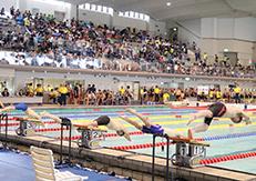 2019年度 日本マスターズ水泳短水路大会福岡会場 大会レポート